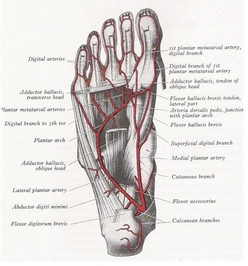 foot_medicine